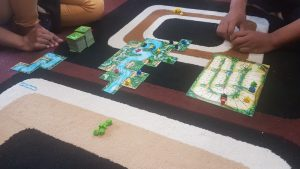 carcassone-amazonas-board-game-review-opini
